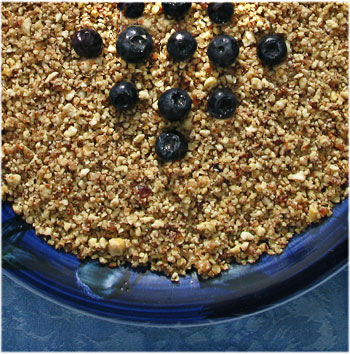Applesauce-Blueberry Crumble