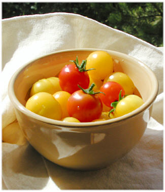 Sun Drenched Tomatoes 1