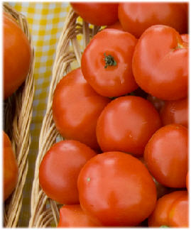 Sun Drenched Tomatoes 2